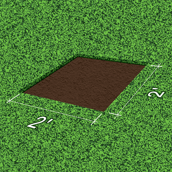 Remove the sod and organic material to expose soil.