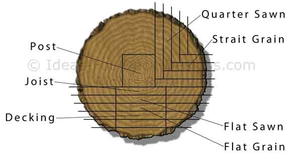 Cutting a log into lumber
