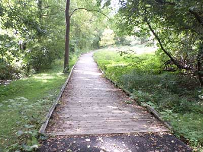 Old and rotting wooden boardwalk before reconstruction.